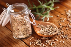 Fennel seeds in the spoon. Fennel seeds in wooden spoon Royalty Free Stock Image