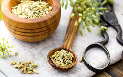 Fennel seeds in spoon Royalty Free Stock Photography