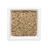 Fennel seeds Stock Photos