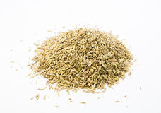 Fennel seeds. On white background Stock Photos
