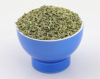 Fennel seeds Stock Images