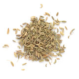 Fennel seeds on white background. Fennel dry seeds isolated on white background Royalty Free Stock Image
