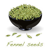Fennel seeds on white background Royalty Free Stock Photo