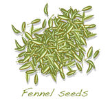 Fennel seeds on white background Stock Images
