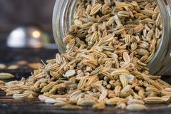 Fennel Seeds. Whole fennel seeds spilled from a spice jar Stock Images