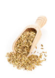 Fennel seeds on wooden scoop Royalty Free Stock Photos