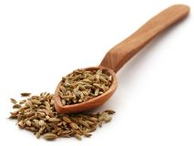 Fennel seeds. In wooden scoop over white background Stock Images