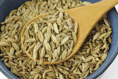 Fennel seeds Royalty Free Stock Photography