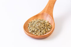 Fennel seeds in a wooden spoon - closeup. Fennel seeds in a wooden spoon - view from top Stock Image