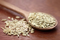 Fennel seeds in a wooden spoon. Over white background Stock Image