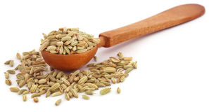 Fennel seeds in a wooden spoon Royalty Free Stock Photography