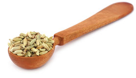 Fennel seeds in a wooden spoon Royalty Free Stock Photo
