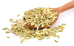 Fennel seeds in a wooden spoon Royalty Free Stock Photos