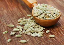 Fennel seeds in a wooden spoon Stock Photography