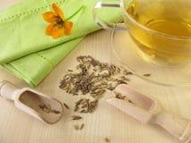 Fennel tea. Cup of fresh fennel tea royalty free stock photos