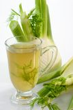 Fennel Tea Royalty Free Stock Images