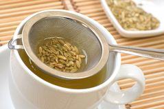 Fennel tea Stock Photos