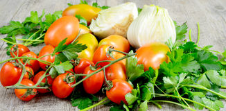 Fennel and tomatoes Stock Photography