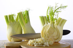 Fennel. Two fennels and a half on a wooden tray with fennel croutons royalty free stock photo