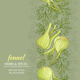 Fennel vector background. Fennel vegetable vector pattern on color background Royalty Free Stock Images