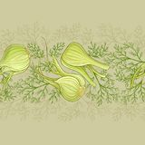 Fennel vector pattern. Fennel plant vector pattern on color background Stock Images