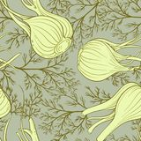 Fennel vector pattern. Fennel plant vector pattern on color background Royalty Free Stock Image