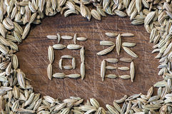 Fennel written in Chinese Royalty Free Stock Photos
