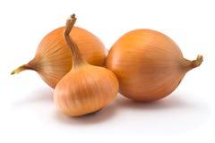 茴香用蕃茄和黄瓜 免版税库存照片
