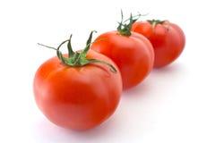 Fennel med tomaten och gurkan Royaltyfri Fotografi
