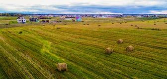 Feno da colheita do outono nos rolos fotos de stock
