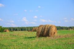 Feno-rolo no prado contra Foto de Stock