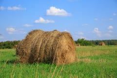 Feno-rolo no prado contra Fotografia de Stock