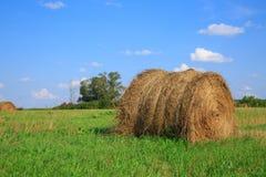 Feno-rolo no prado contra Imagem de Stock