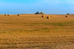 Feno torcido no campo, pacotes de feno, campos com monte de feno torcidos Fotos de Stock Royalty Free