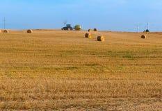 Feno torcido no campo, pacotes de feno, campos com monte de feno torcidos Imagem de Stock
