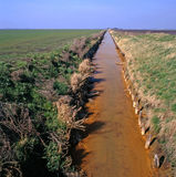Fens. Fenland in the east of England near the town of March royalty free stock images