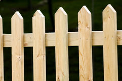 Fense. The picket fencing in a garden Stock Images