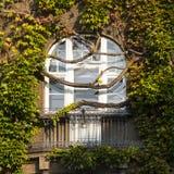 Fenster überwältigt durch üppigen grünen Efeu Lizenzfreie Stockfotografie