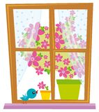 Fenster Stockfotos