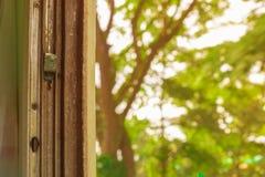 Fenster alt von der Zugfahrtreise in der Landschaft wählen Sie Fokus mit flacher Schärfentiefe und unscharfen Hintergrund vor stockfotografie