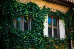 Fenster auf alter Wand Stockbild