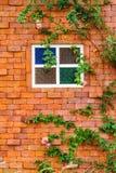 Fenster auf Backsteinmauer Stockbilder