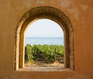 Fenster auf dem Weinberg Lizenzfreies Stockfoto