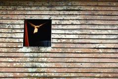 Fenster auf der hölzernen Wand Stockfotografie
