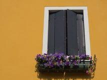Fenster auf gelbem Haus in Venedig Italien Stockfotos