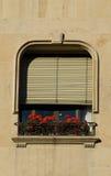 Fenster, Blendenverschlüsse, flowerbox Lizenzfreies Stockfoto