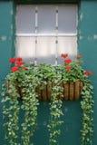 Fenster-Dekoration stockfoto