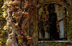 Fenster des Landsitzhauses Stockfotografie