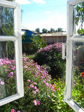 Fenster in einem Garten Stockfotos