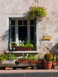 Fenster-Gartenarbeit Stockfotos